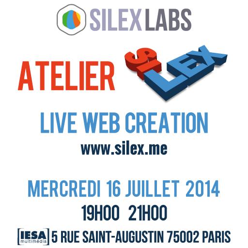 Atelier-Silex-Juillet-2014